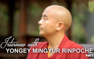 Wawancara Khusus: Yongey Mingyur Rinpoche (Bagian 1)