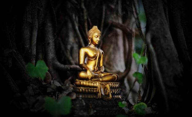Buddha dan Pohon