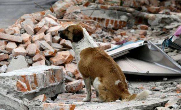 Karma dan Bencana Alam