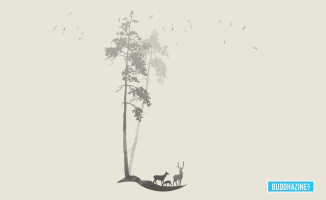 Zen dalam Bencana