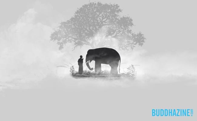 Mengagumi Buddha dari Jauh, Menyebar Fakta Kebaikan