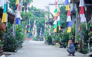 Dusun Buddhis Krecek Juara Lomba Kampung Siaga Candi