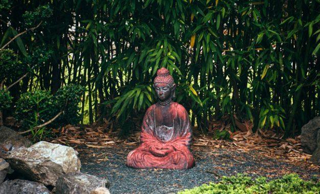 Teladan Buddha Ketika Dihardik