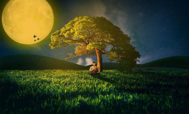 Bisakah Mencapai Pencerahan Tanpa Meditasi?